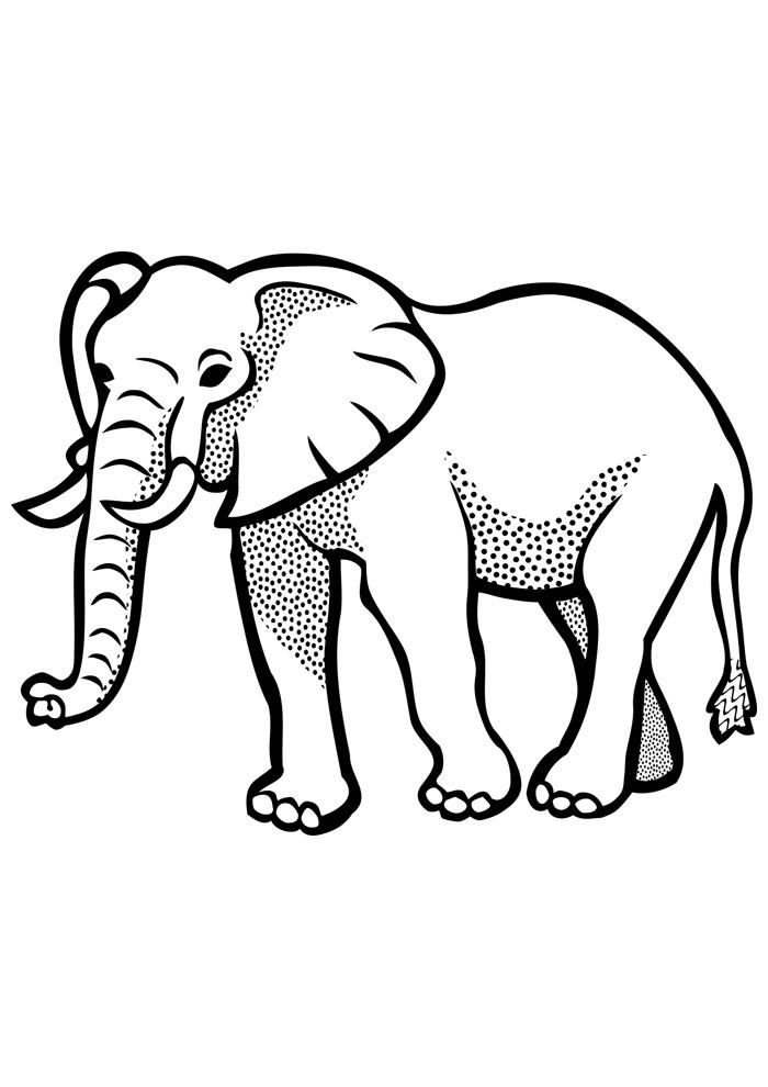 elefante para colorir 22
