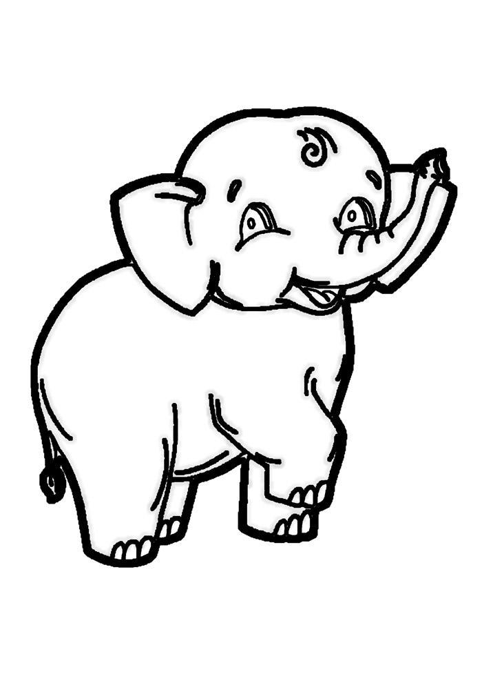 elefante para colorir 28