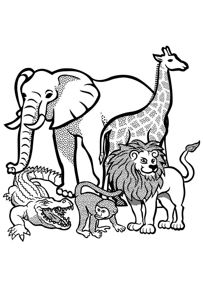 elefante para colorir 3