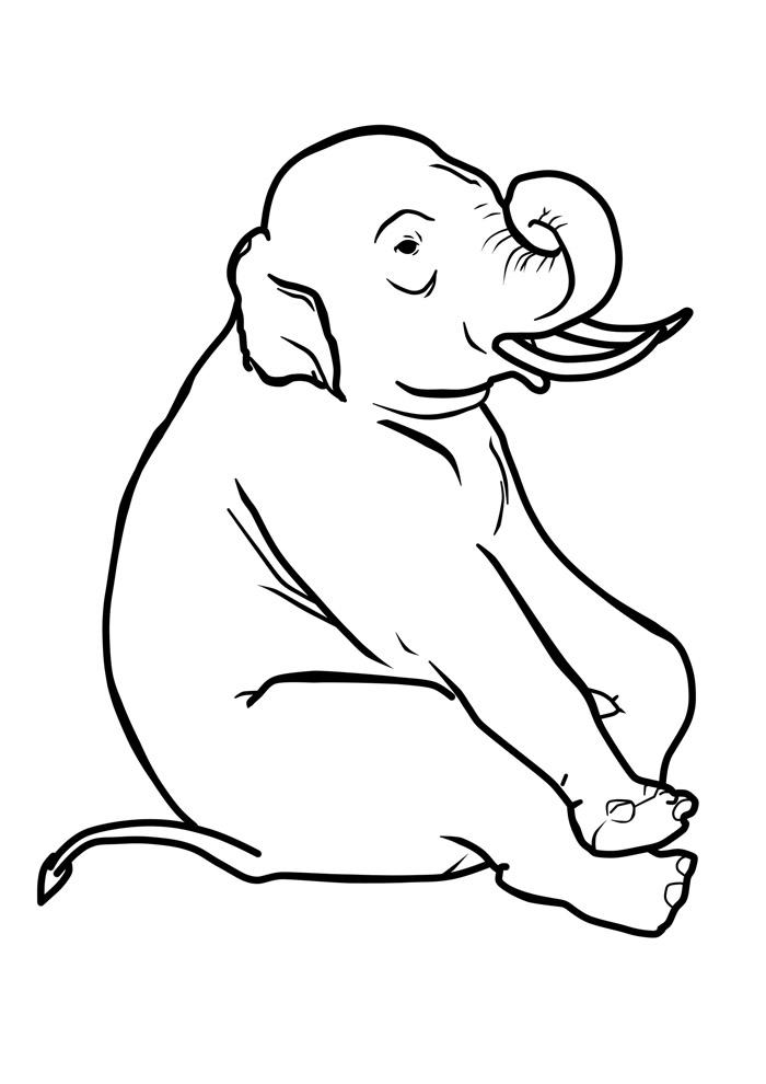 elefante para colorir 30