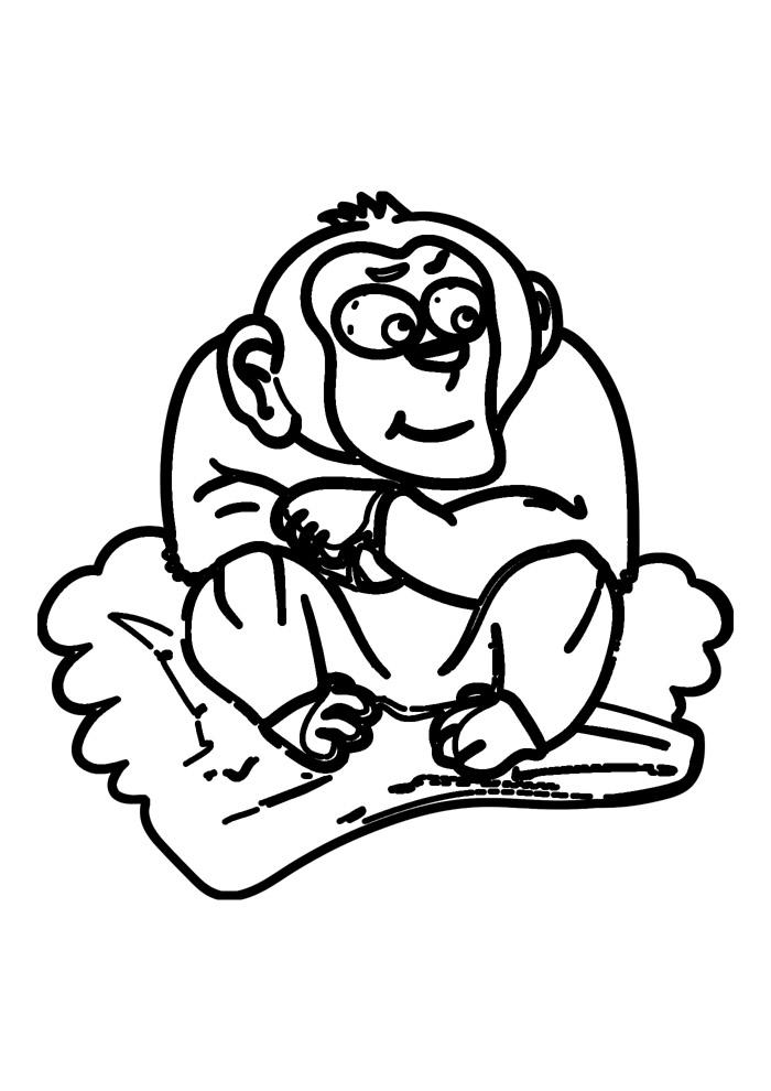 macaco para colorir 12