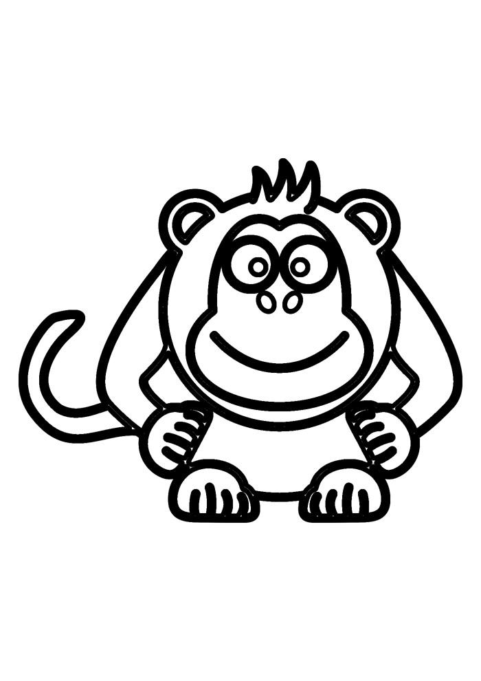 macaco para colorir 16