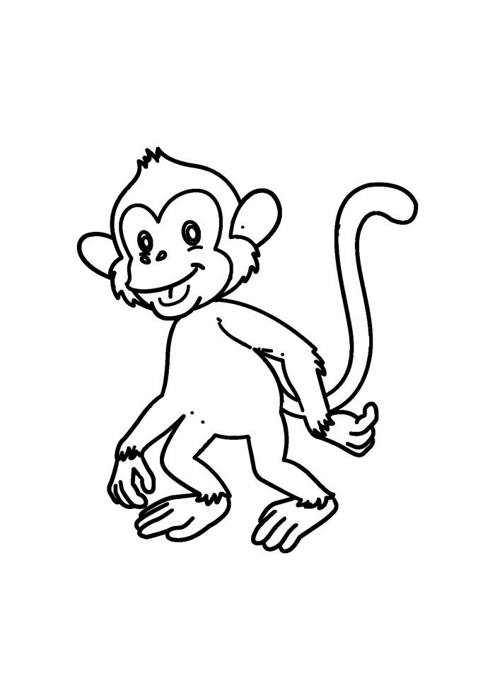 macaco para colorir 40