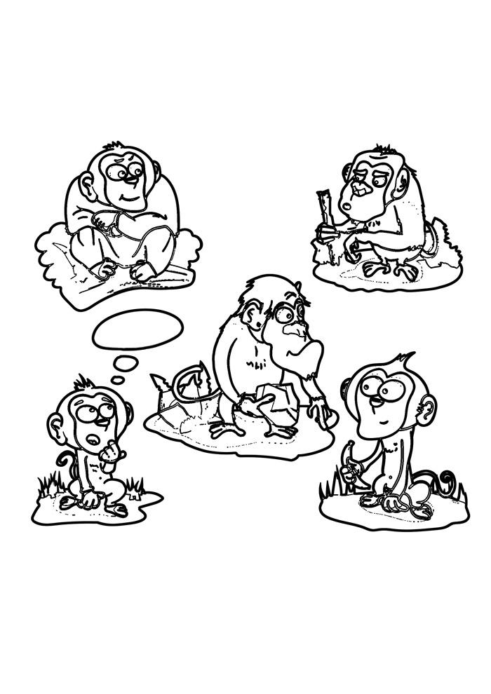macaco para colorir 46