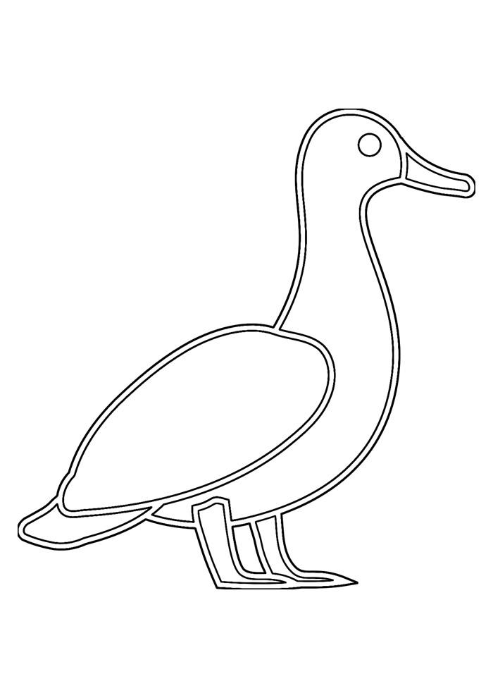 pato para colorir 22