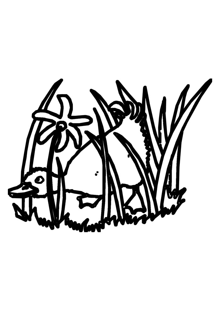 pato para colorir 29