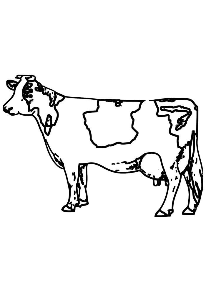 vaca para colorir 13
