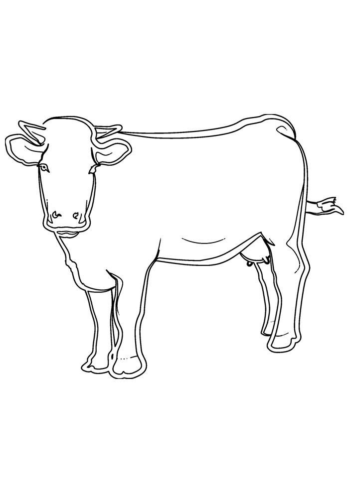 vaca para colorir 21