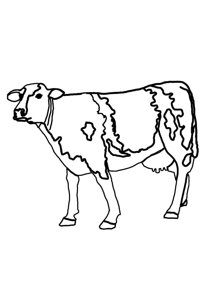 vaca para colorir 26