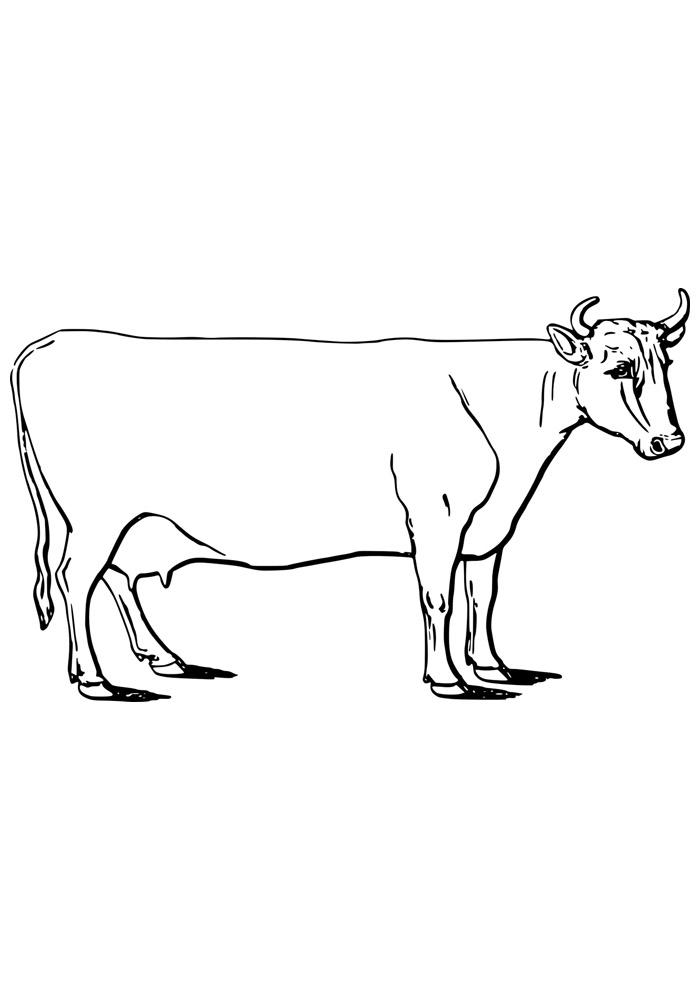vaca para colorir 3