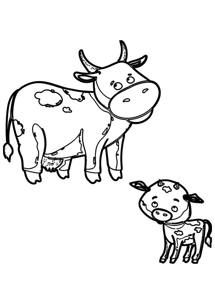 vaca para colorir 32