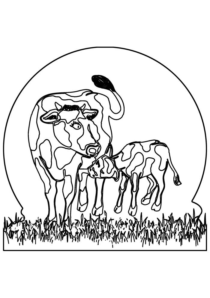 vaca para colorir 38