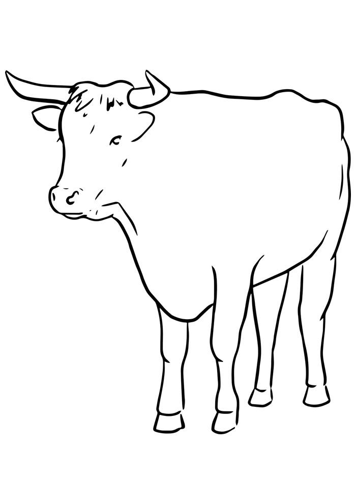 vaca para colorir 6