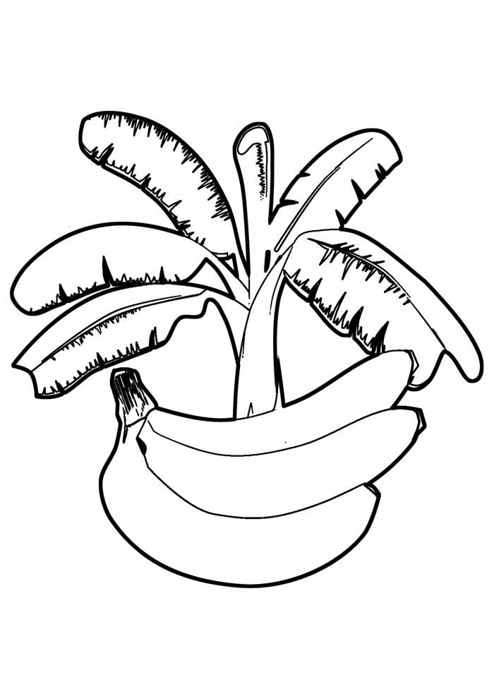 banana para colorir 1
