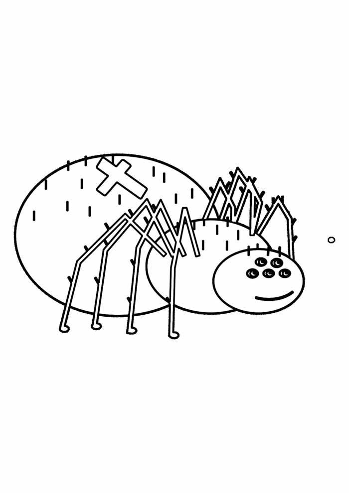 aranha para colorir 6