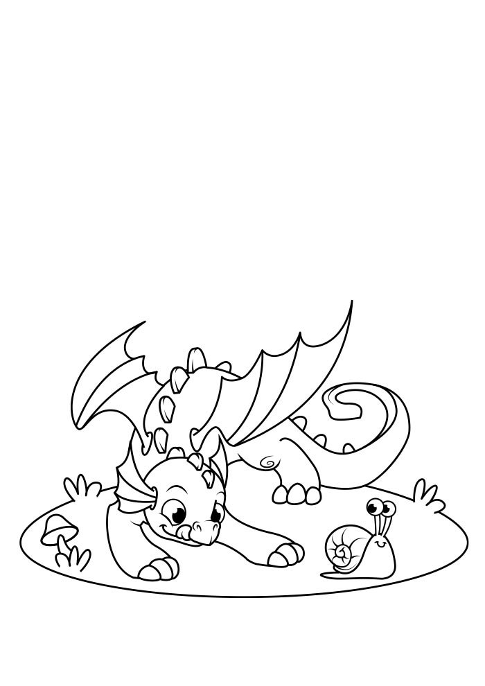 dragao para colorir 11