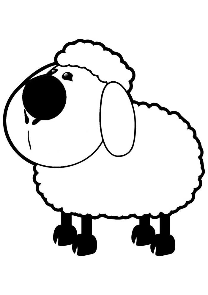 ovelha para colorir 10