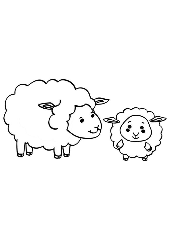 ovelha para colorir 12