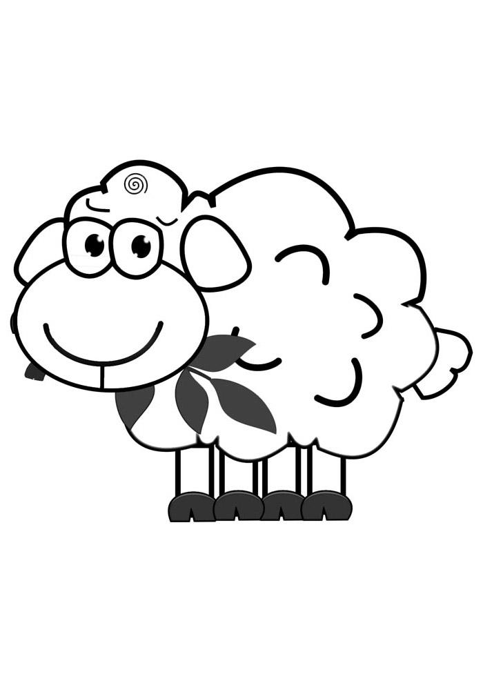 ovelha para colorir 15