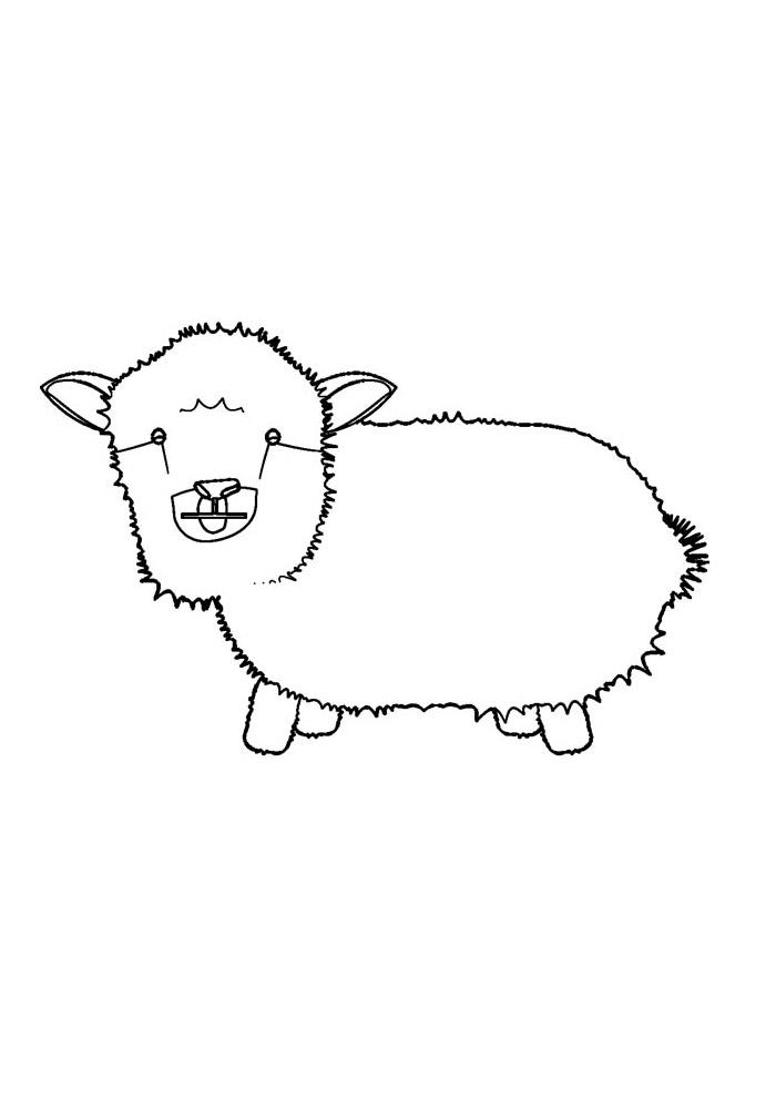 ovelha para colorir 17