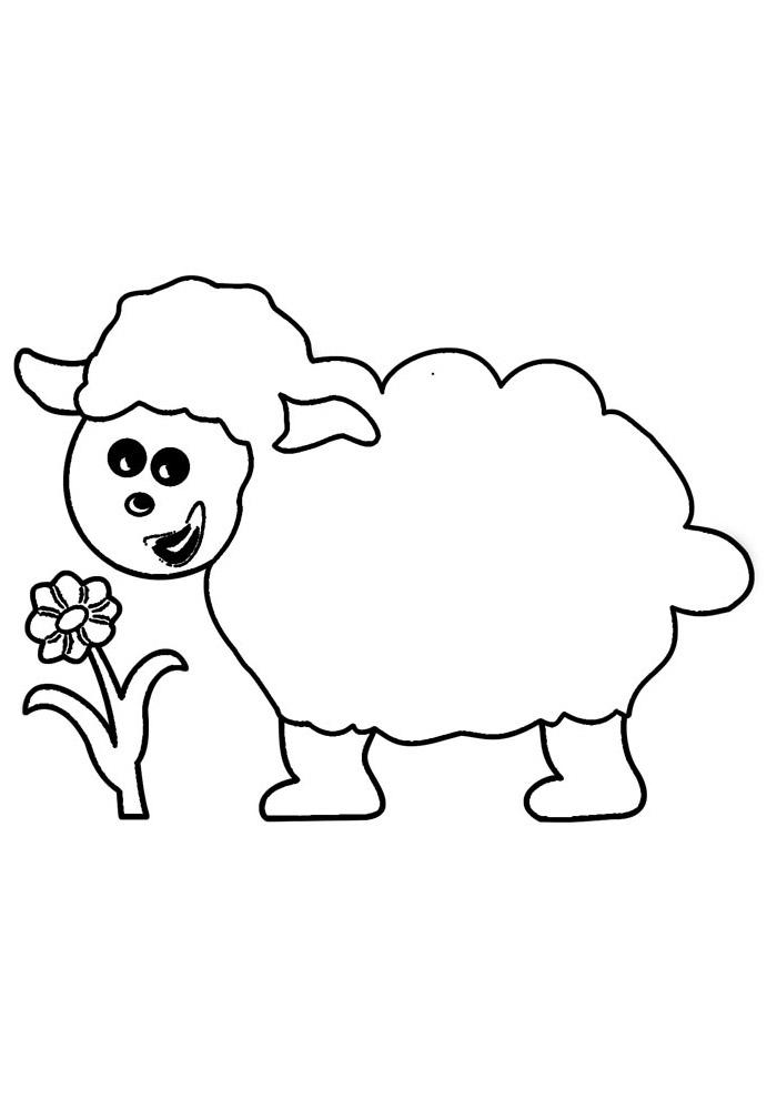 ovelha para colorir 4