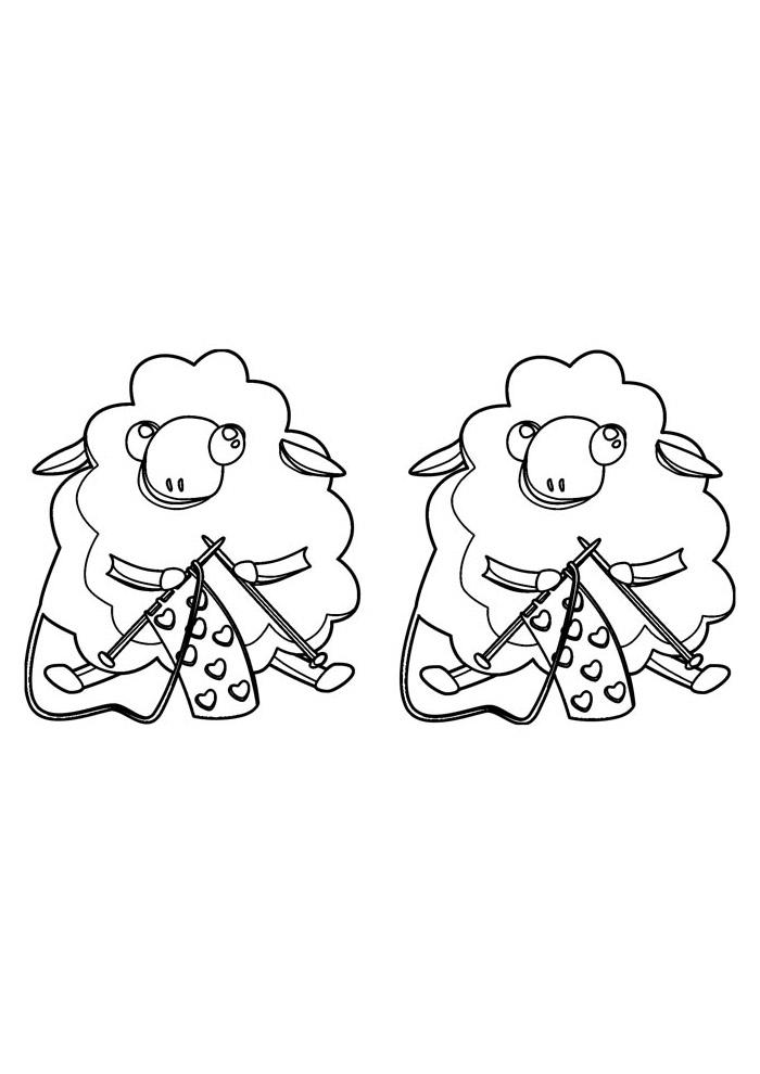 ovelha para colorir 7