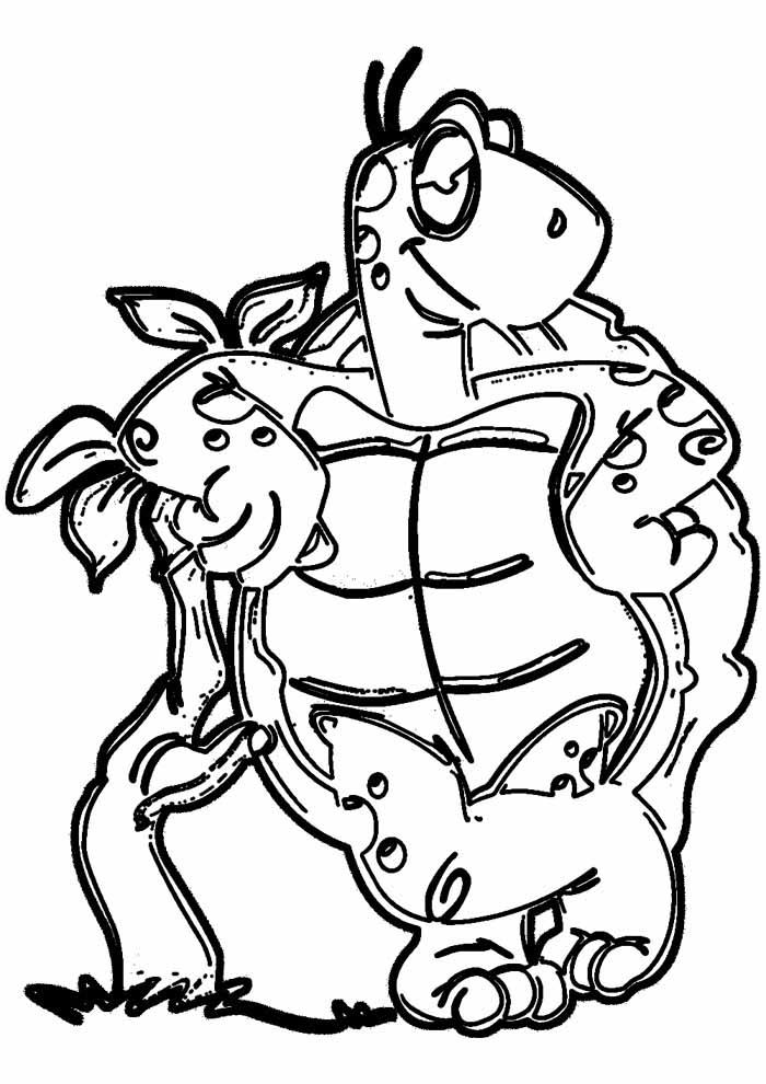 tartaruga para colorir 1