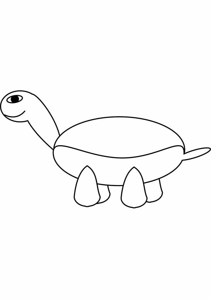 tartaruga para colorir 10