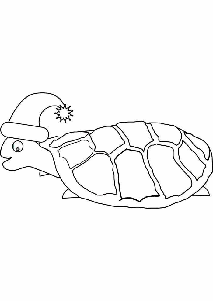 tartaruga para colorir 16