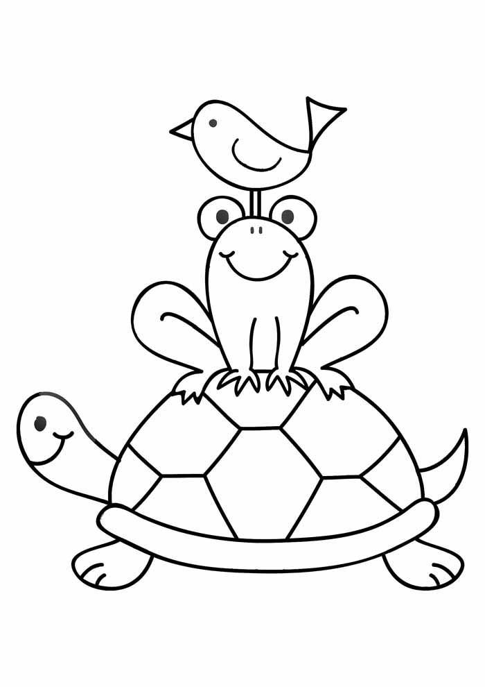 tartaruga para colorir 29
