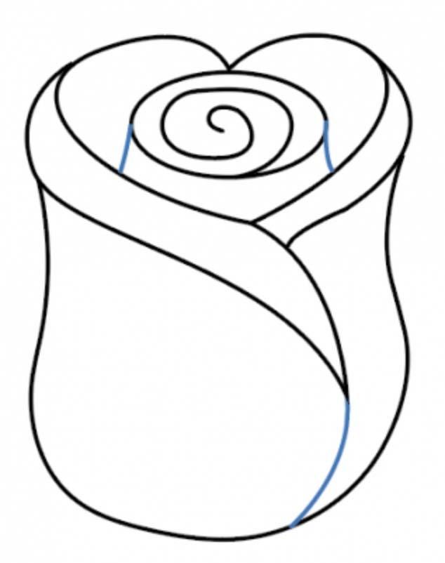 como desenhar uma rosa passo 7