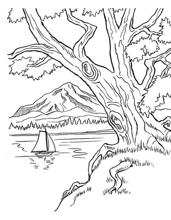 paisagem para colorir 16
