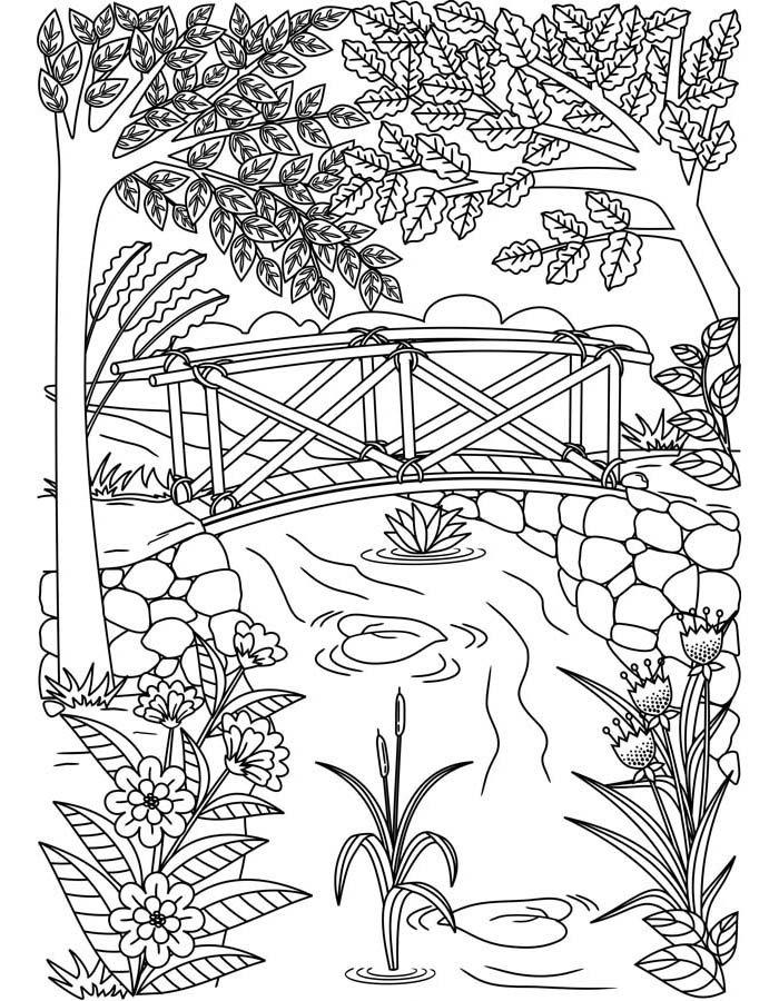 paisagem para colorir 20