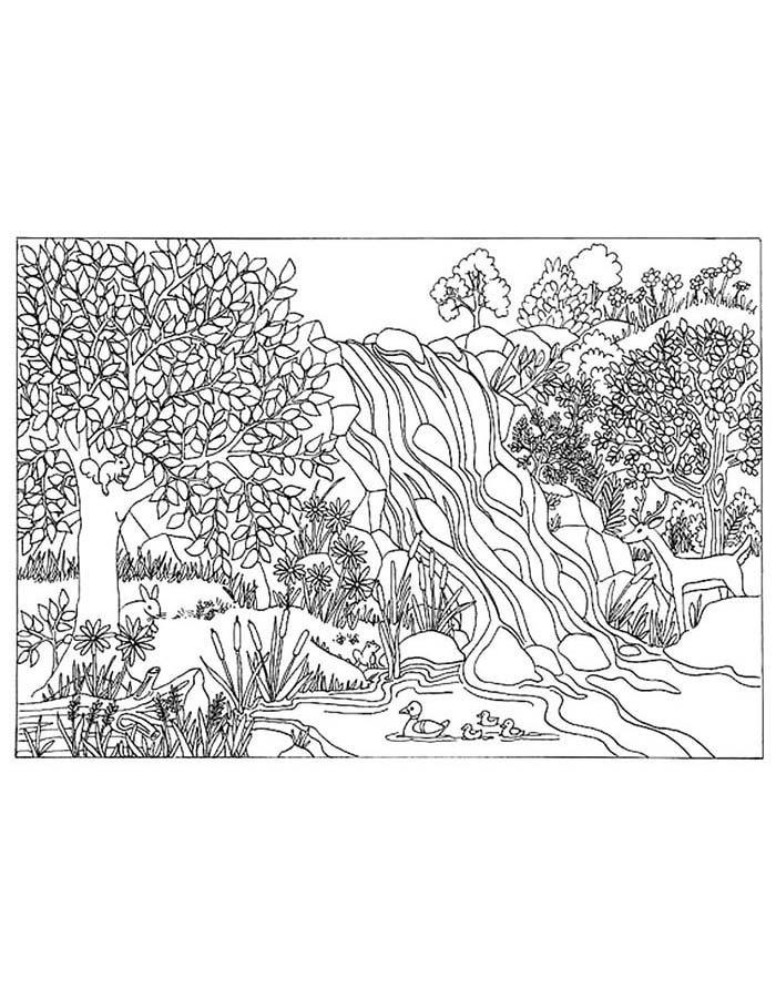 paisagem para colorir 27