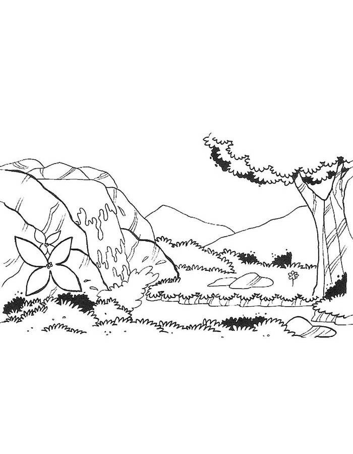 paisagem para colorir 28