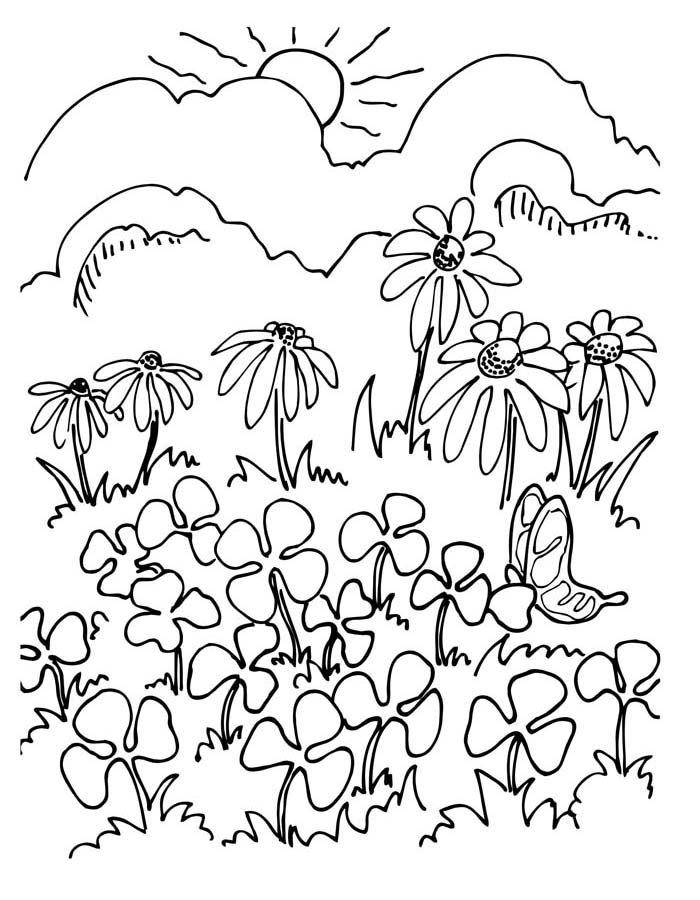 paisagem para colorir 29