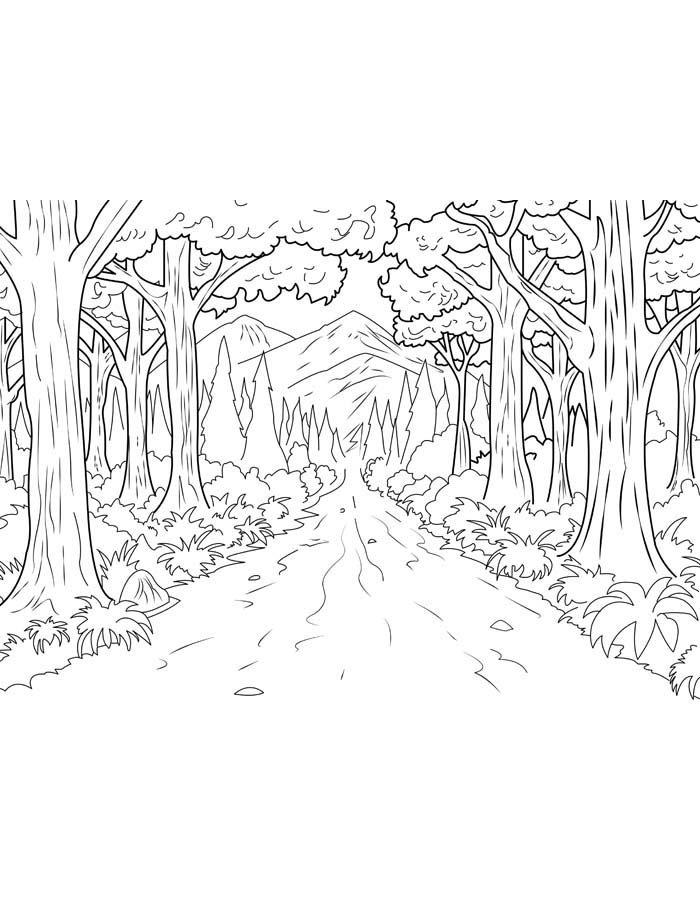 paisagem para colorir 30