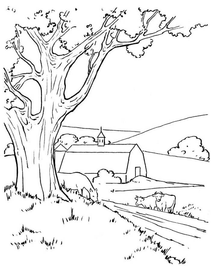 paisagem para colorir 31