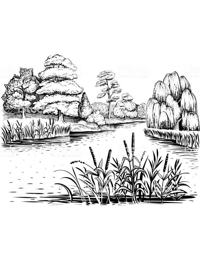 paisagem para colorir 41