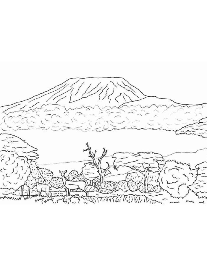 paisagem para colorir 5