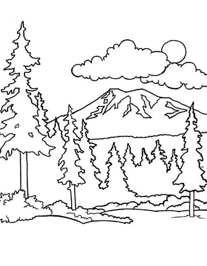 paisagem para colorir 55