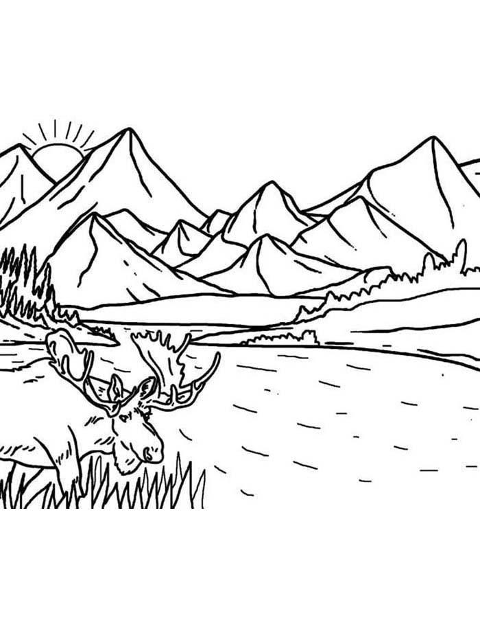 paisagem para colorir 56