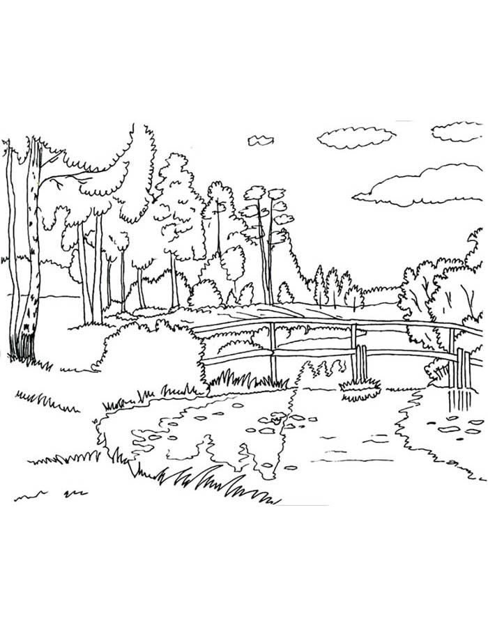 paisagem para colorir 62
