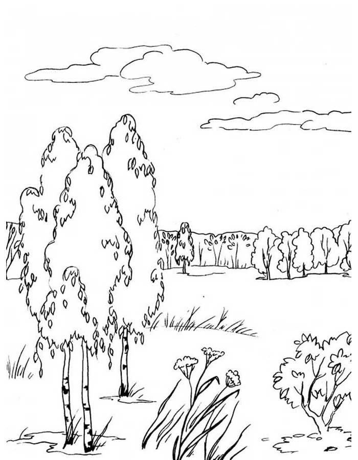 paisagem para colorir 63