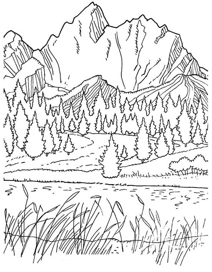 paisagem para colorir 64